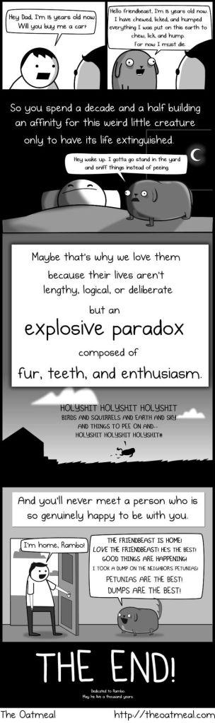 My Dog the Paradox7
